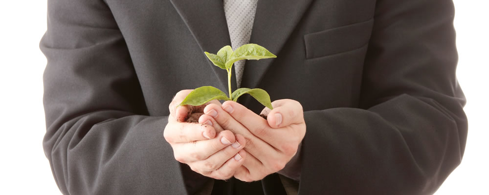 Help employees grow in the workplace